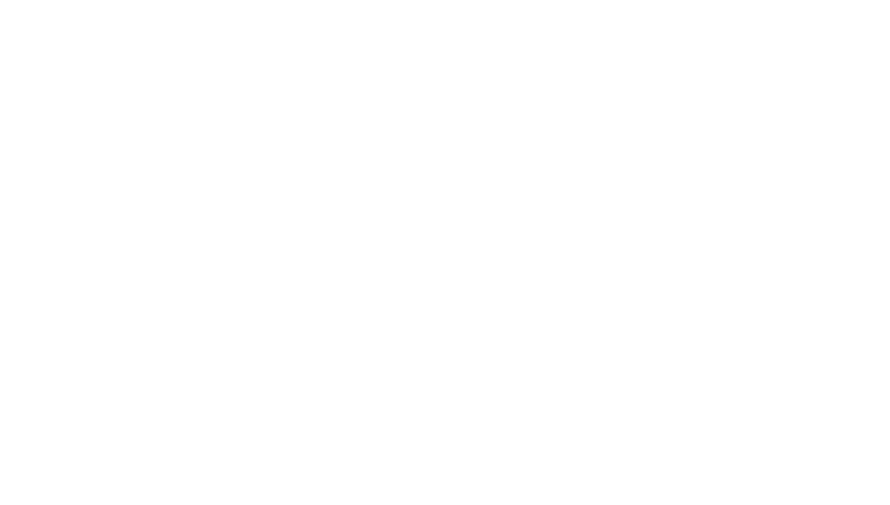 Harlem Children Zone